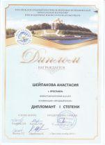 Диплом Шейпакова pdf.page1